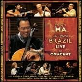 巴西禮讚-音樂會現場