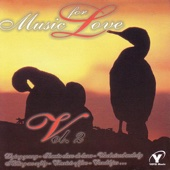 Music for Love, Vol. 2