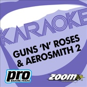 Zoom Karaoke: Guns 'N' Roses & Aerosmith, Vol. 2