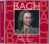 Cantata No. 23 Du Wahrer Gott Und Davids Sohn: IV. Chorale -