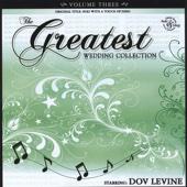 The Greatest Wedding Album - Volume 3 - starring Dov Levine
