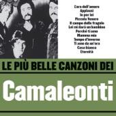Camaleonti - Le Più Belle Canzoni Dei Camaleonti artwork