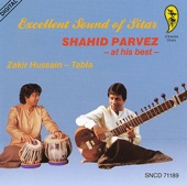 Excellent Sound of Sitar: Shahid Parvez At His Best