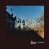 Download Lagu MP3 The Cinematic Orchestra - To Build a Home (feat. Patrick Watson)