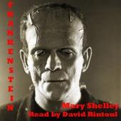 Frankenstein - Mary Shelley Cover Art