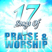 17 Songs of Praise & Worship