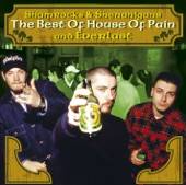 Shamrocks & Shenanigans - The Best of House of Pain & Everlast