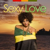 Sexy Love - R 'N' B Meets Reggae Lovers[Reggae Collection]