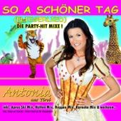 So a schöner Tag (Fliegerlied) [Après Ski Mix]