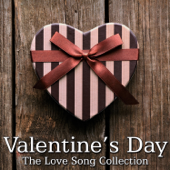 Valentines Day - The Love Song Collection (Instrumental)