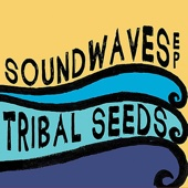 In Your Eyes - Tribal Seeds Cover Art