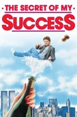 Herbert Ross - The Secret of My Success  artwork