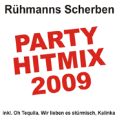 Partyhitmix 2009 (inkl. Oh Tequila, Wir Lieben Es Stürmisch, Kalinka)