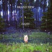 Daisy cover art