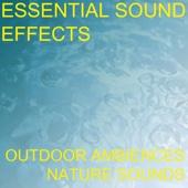 Essential Sound Effects - Sink Faucet Bathroom Fill Run Running Water Sound Effects Sound Effect Sounds EFX SFX FX Water Sound Effects Water Sounds Miscellaneous artwork