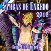 Sambas de Enredo das Escolas de Samba: Carnaval 2012
