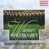 Ave Verum Corpus, K. 618 - Wiener Sängerknaben, Chorus Viennensis, Peter Marschik & Wiener Volksoper Orchestra