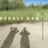 Steely Dan - Two Against Nature  artwork