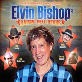 Elvin Bishop - Fooled Around and Fell in Love artwork