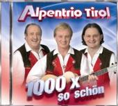 Träume sind zum Greifen nah (Duett - Alpentrio & Amigos)