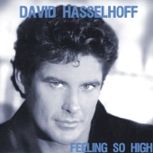 Hot Shot City - David Hasselhoff
