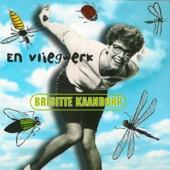 En Vliegwerk - Brigitte Kaandorp