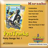 Ymca (Karaoke Version Instrumental Only)