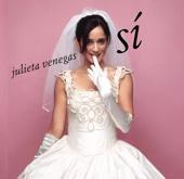 Julieta Venegas - Andar Conmigo ilustración