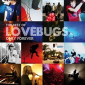 Only Forever - the Best of Lovebugs