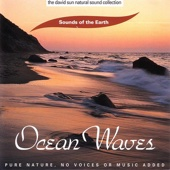 The David Sun Natural Sound Collection: Sounds of the Earth - Ocean Waves