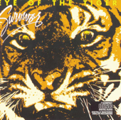 [Download] Eye of the Tiger MP3