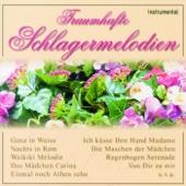 Chrysanthemen Walzer