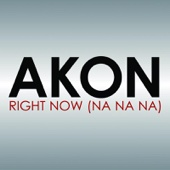 Akon - Right Now (Na Na Na) artwork