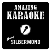 Best of Silbermond (Karaoke)