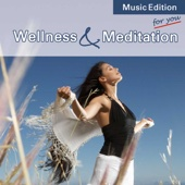 Wellness & Meditation