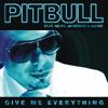 Pitbull - Give Me Everything (feat. Ne-Yo, Afrojack & Nayer) bild