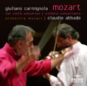 Sinfonia concertante for Violin, Viola and Orchestra In E-Flat, K. 364: II. Andante