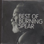 Not Stupid - Burning Spear