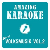 Amazing Karaoke - Best of Volksmusik, Vol. 2