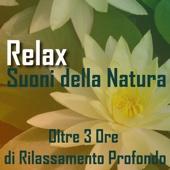Relax Suoni della Natura (Ideale per yoga, meditazione, rilassamento profondo, reiki, pilates)