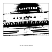The Harmonium Sessions - EP