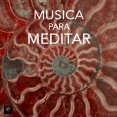 Musica para Meditar e Musica de Relax