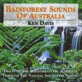 Daintree Rainforest [Free mp3 Download songs and listen music]