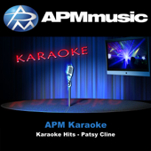 Download APM Karaoke - She's Got You