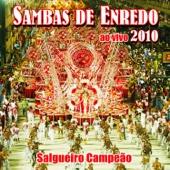 Sambas de Enredo das Escolas de Samba: Carnaval 2010 (Ao Vivo)