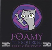 Fuck Everyone - Foamy the Squirrel