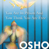 You Are in Prison and You Think You Are Free - EP