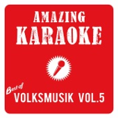 Best of Volksmusik, Vol. 5 (Karaoke)