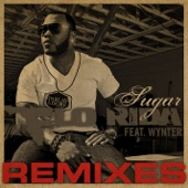 Sugar Remixes (feat. Wynter) cover art