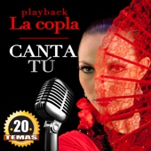 20 Coplas Instrumentales. Canta Tu